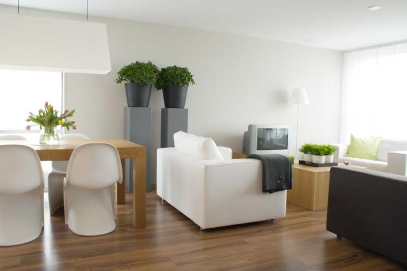 От чистоты в вашем доме зависит благополучие в жизни